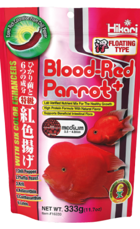 hikari-blood-red-parrot